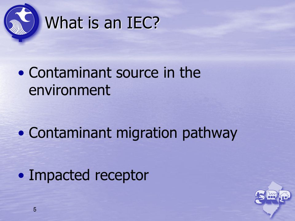 What is an IEC Contaminant source in the environment