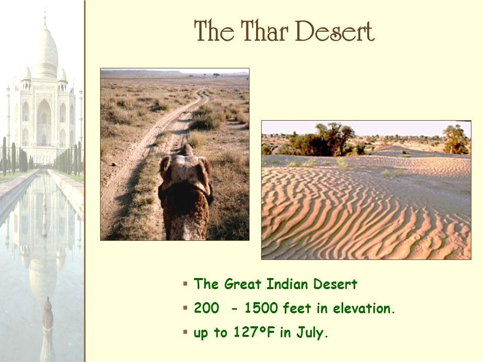The Thar Desert The Great Indian Desert feet in elevation.
