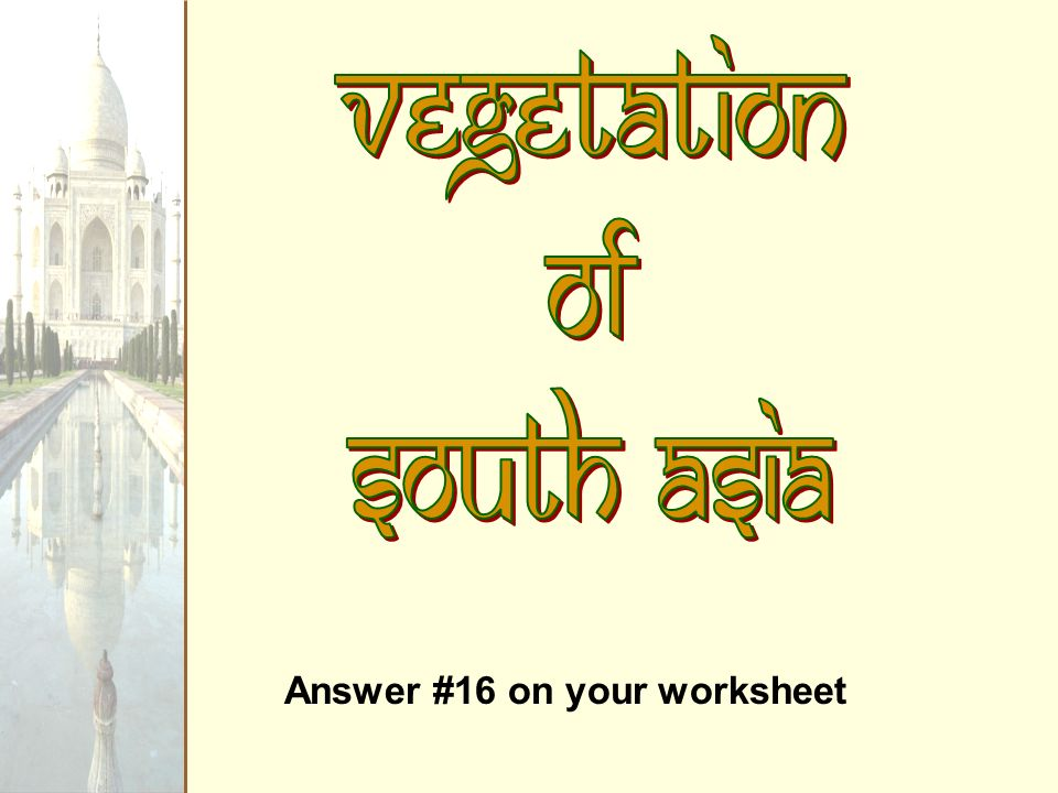 Vegetation of South Asia Answer #16 on your worksheet