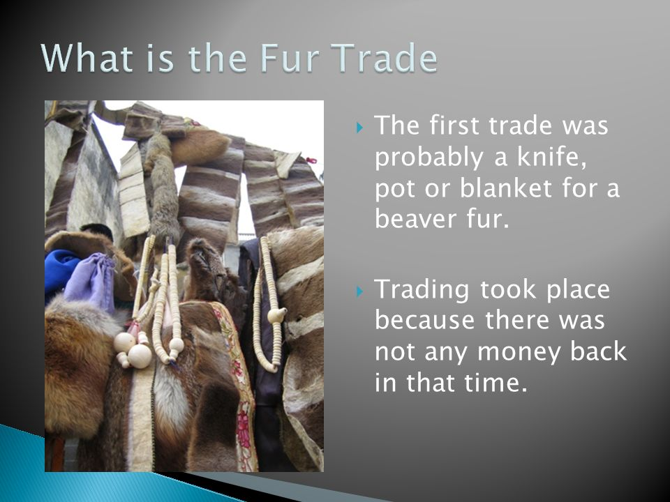 effects of the fur trade on native societies essay 2018-6-17 the company was soon the dominant force in the fur trade and set the standards as to how the trade would operate the company constructed fort pierre chouteau in 1832 as one of its main distribution points on the upper missouri.