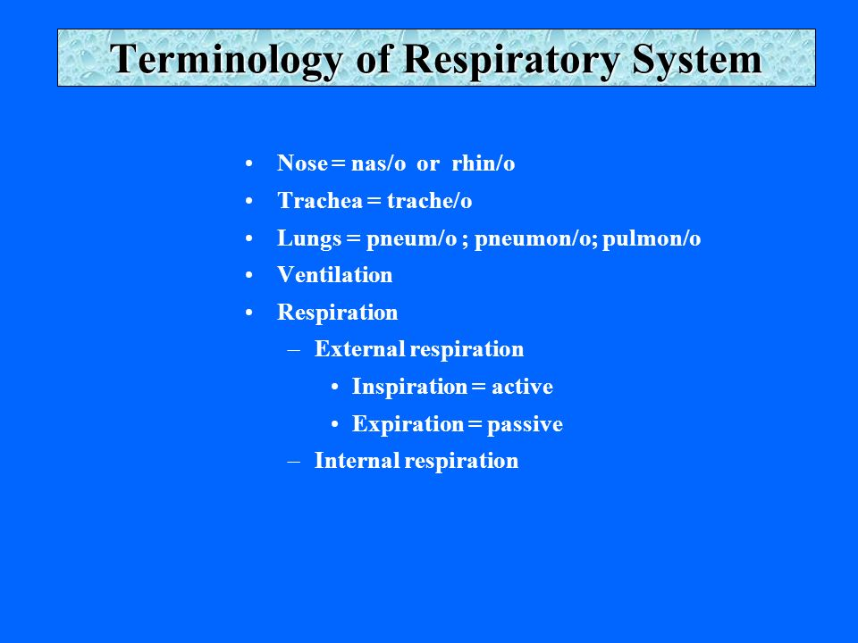 Terminology of Respiratory System