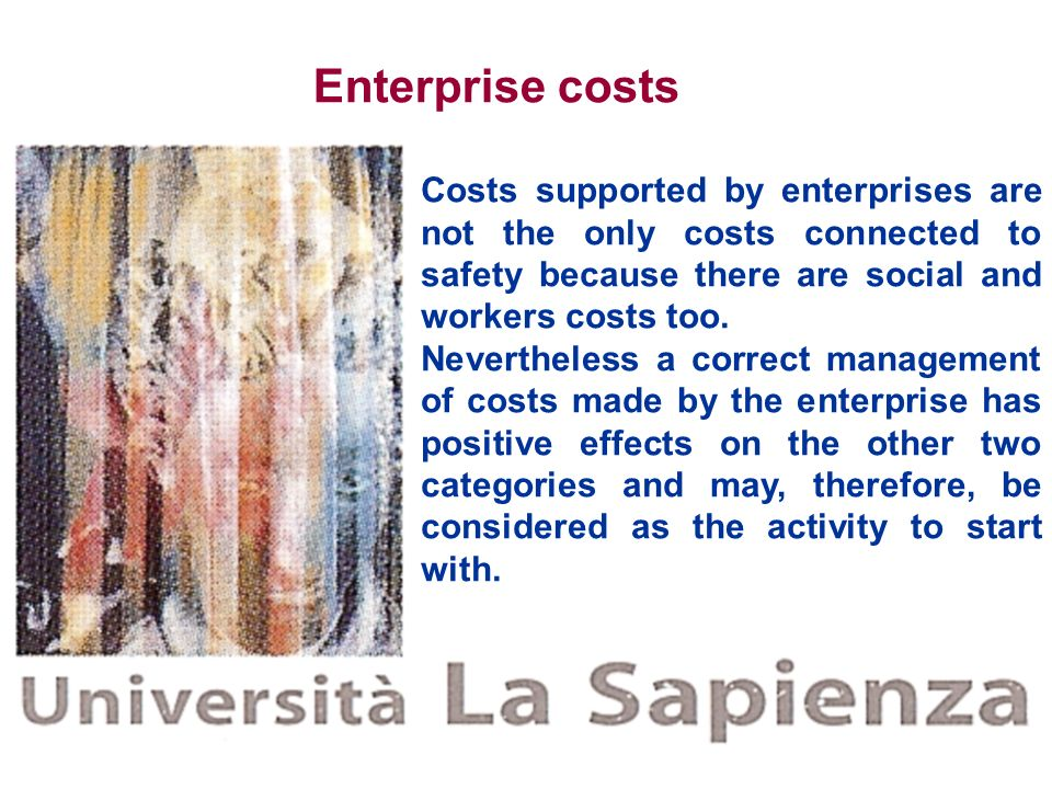 Enterprise costs Costs supported by enterprises are not the only costs connected to safety because there are social and workers costs too.