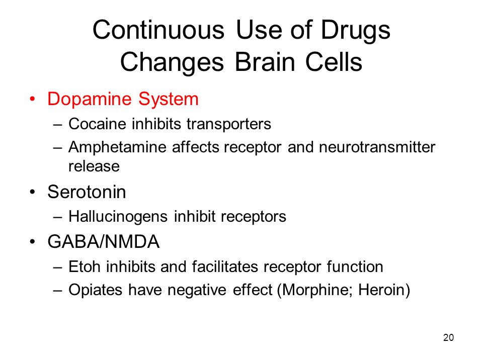 Continuous Use of Drugs Changes Brain Cells
