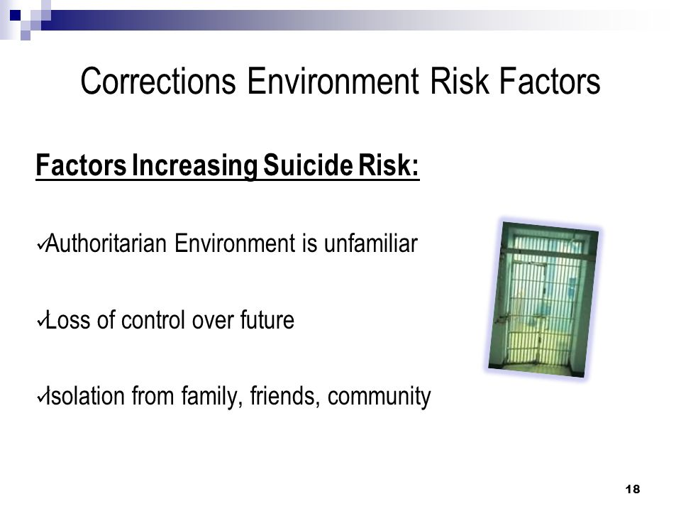 Corrections Environment Risk Factors