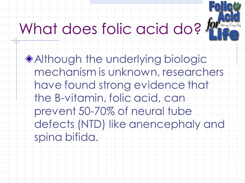 What does folic acid do