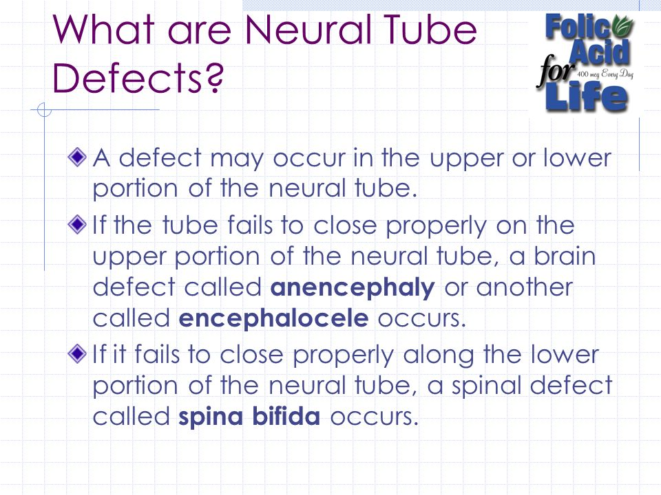 What are Neural Tube Defects