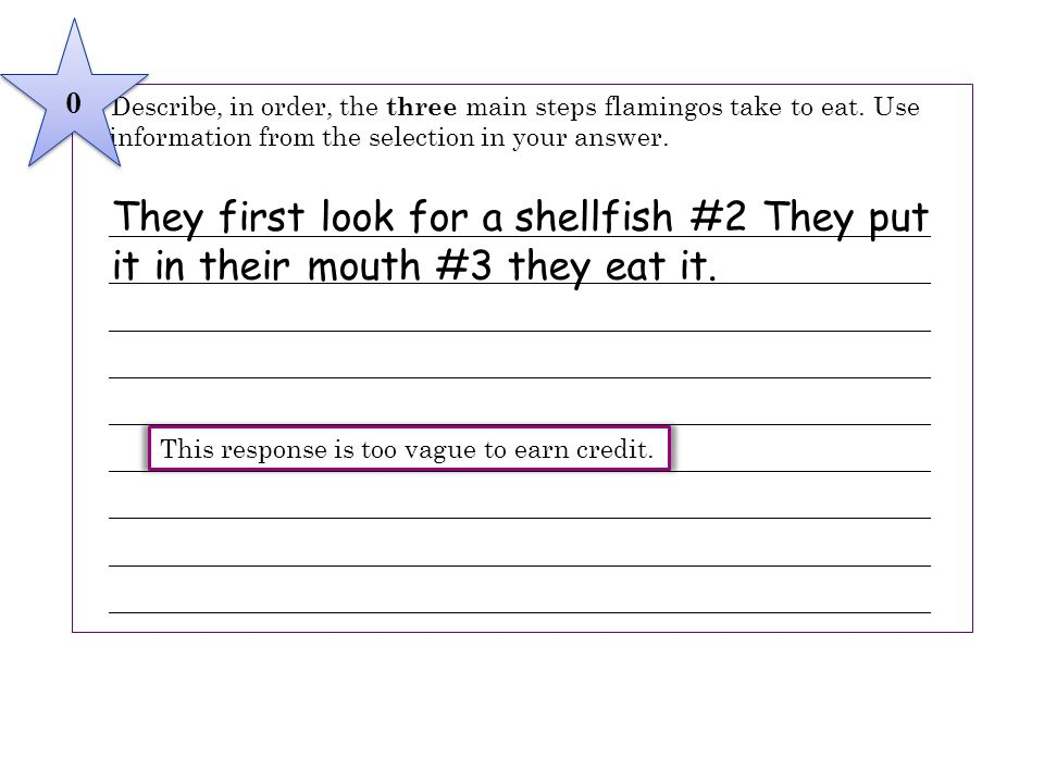 4 Describe, in order, the three main steps flamingos take to eat. Use information from the selection in your answer.