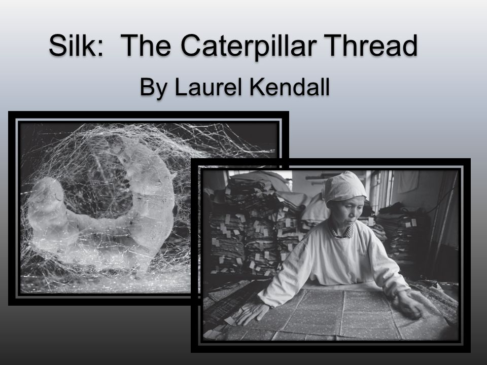 Silk: The Caterpillar Thread