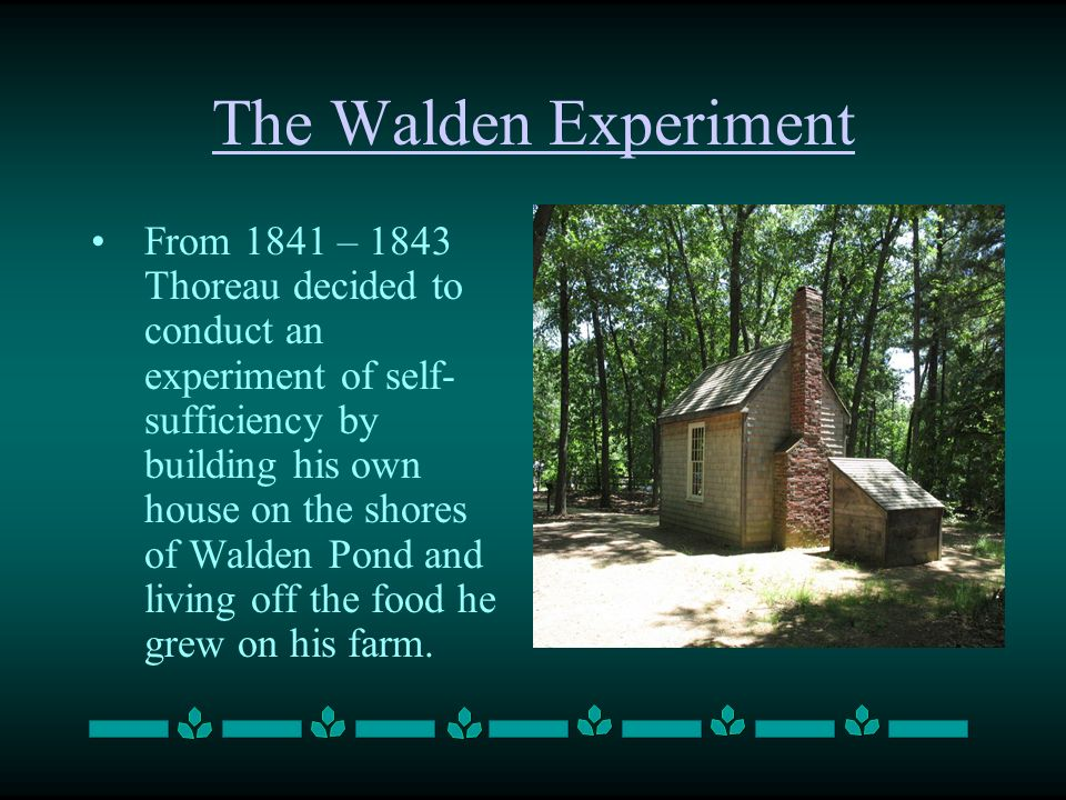 The Walden Experiment