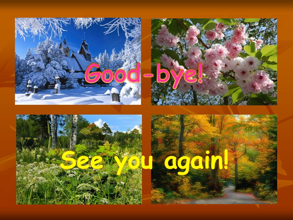 Good-bye! See you again!