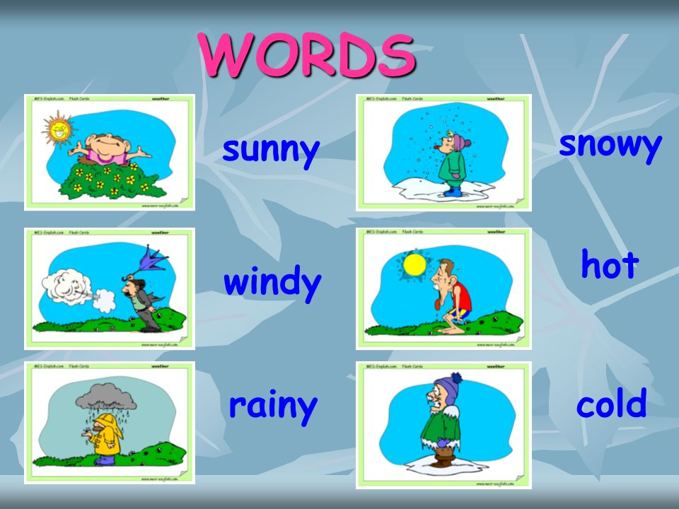WORDS snowy sunny hot windy rainy cold