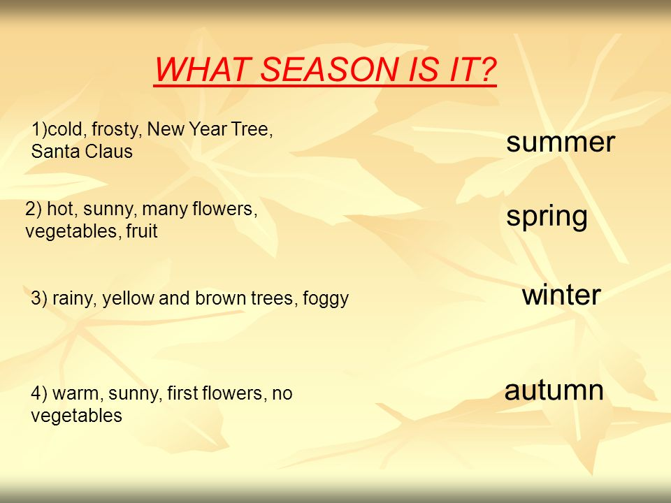 WHAT SEASON IS IT summer spring winter autumn