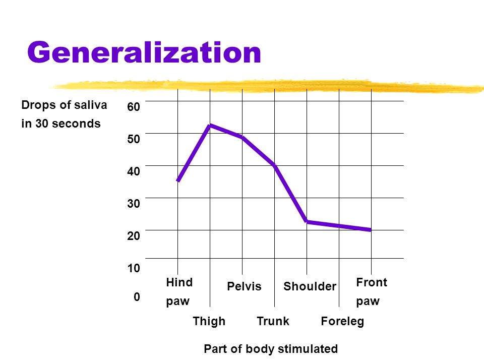 Generalization Drops of saliva in 30 seconds 60 50 40 30 20 10 Hind