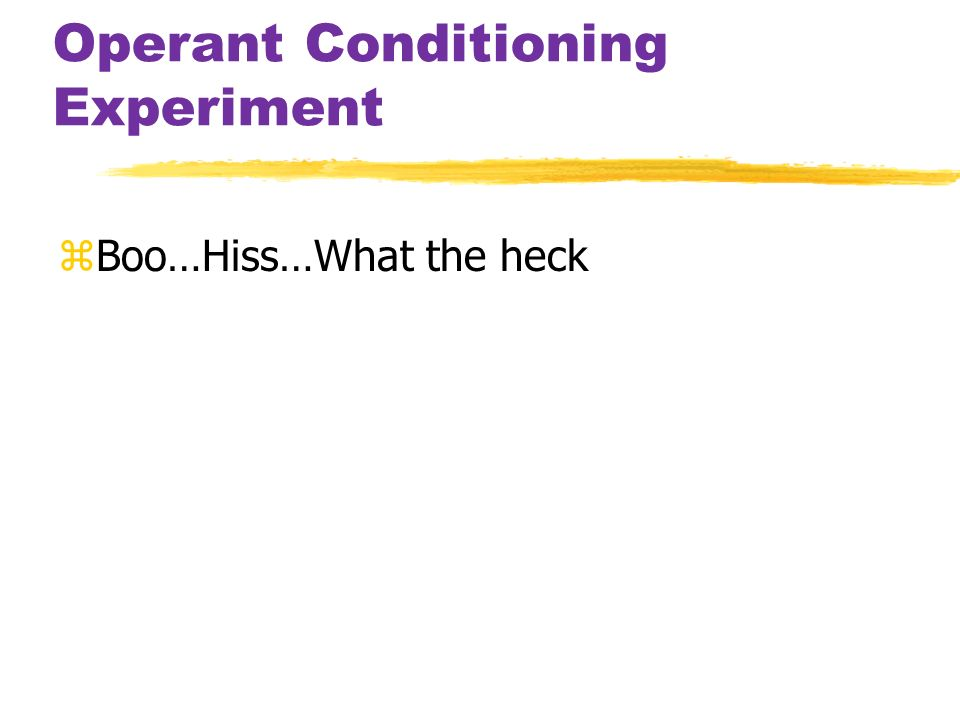 Operant Conditioning Experiment