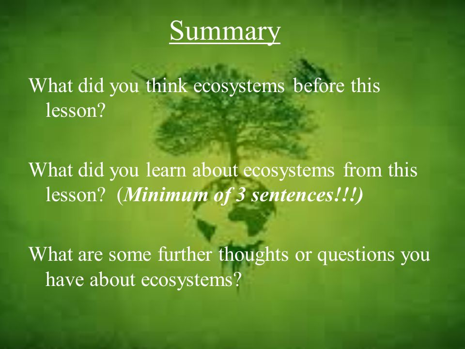 Summary What did you think ecosystems before this lesson