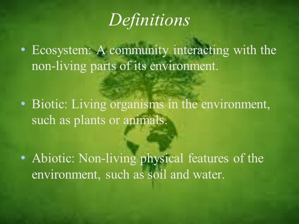 Definitions Ecosystem: A community interacting with the non-living parts of its environment.