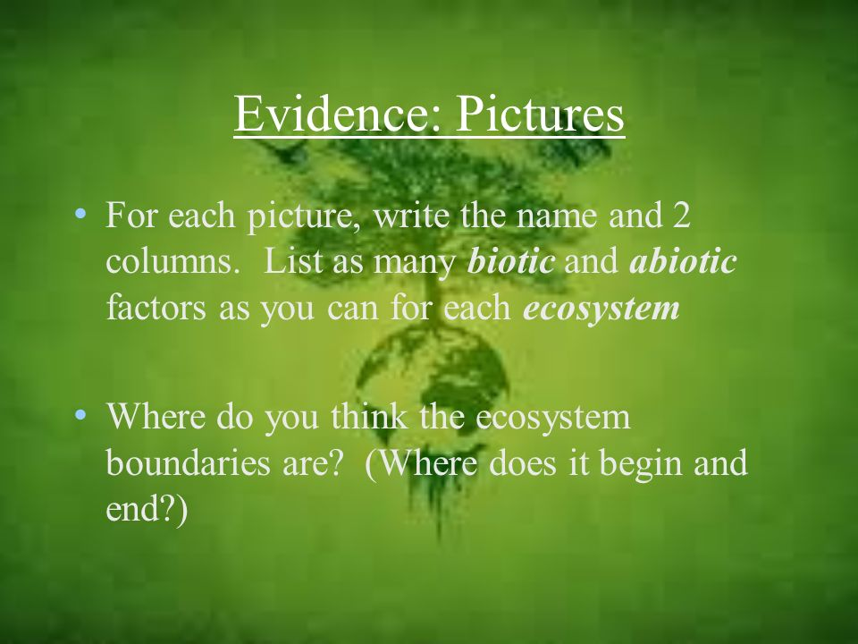 Evidence: Pictures For each picture, write the name and 2 columns. List as many biotic and abiotic factors as you can for each ecosystem.
