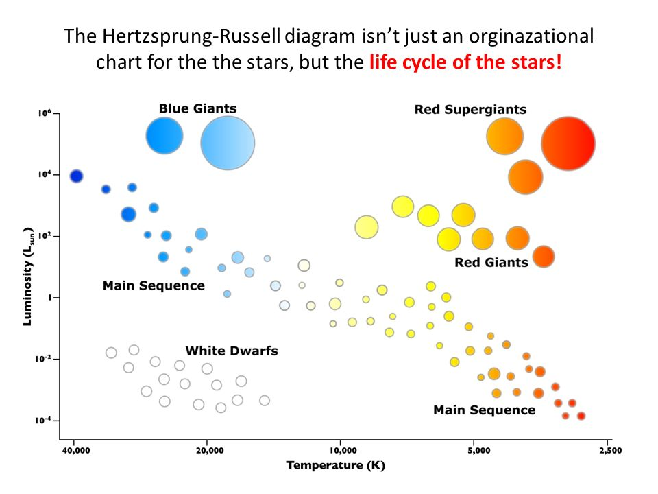 2 The Hertzsprung Russell Diagram Isnt Just An Orginazational Chart For Stars But Life Cycle Of