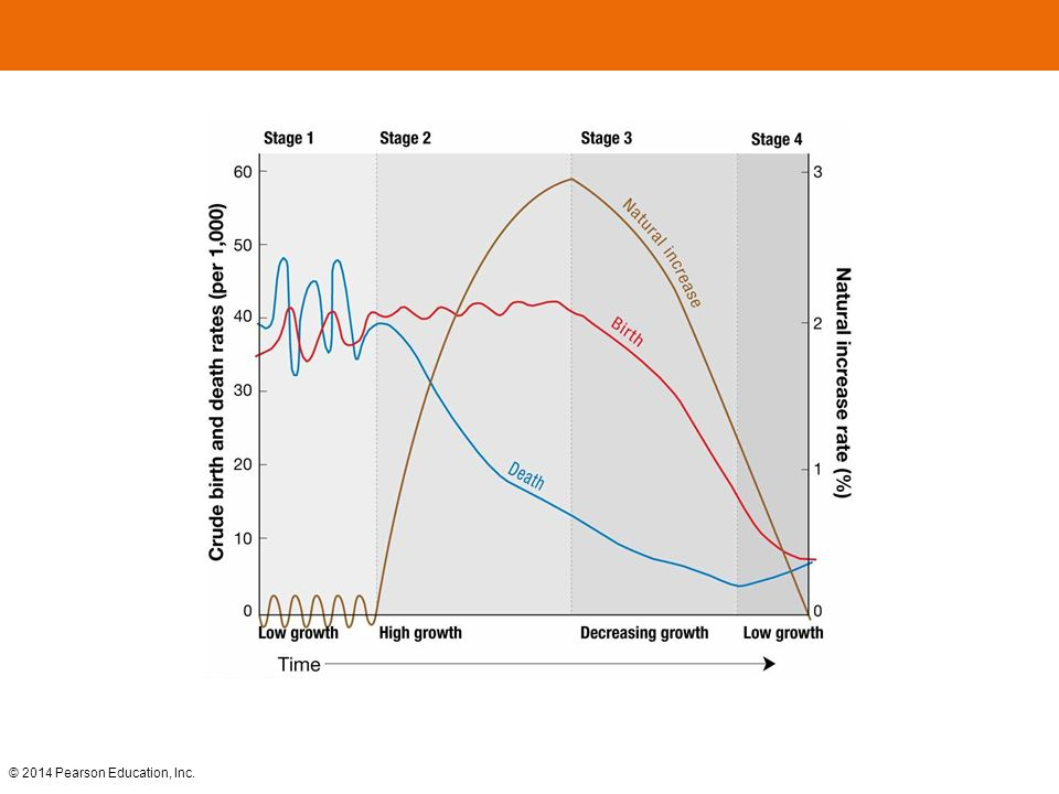 FIGURE 2-17 DEMOGRAPHIC TRANSITION MODEL The demographic transition model consists of four stages.
