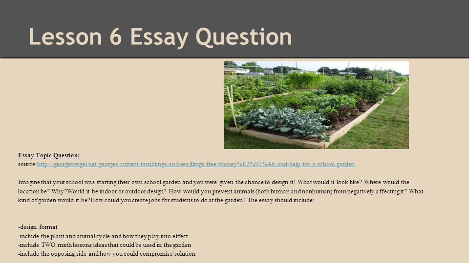 essay avoiding compromising situations Competing the strength maybe that one person will see the benefitsthe weakness will be that the other person in the issue will not benefit the same or at all at the other person in the situation and does not consider the other in the situations.