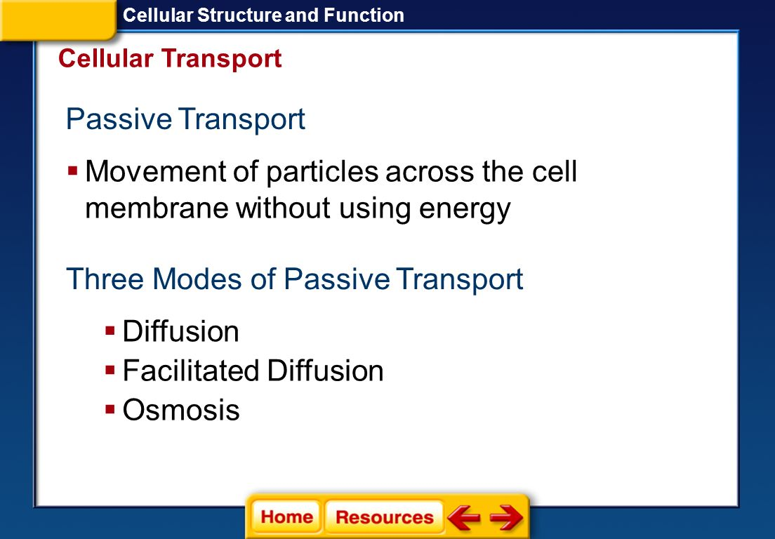 Movement of particles across the cell membrane without using energy