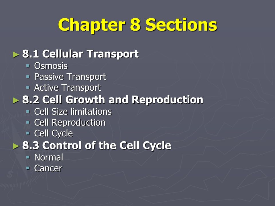 Cellular Transport And The Cell Cycle Ppt Video Online Download