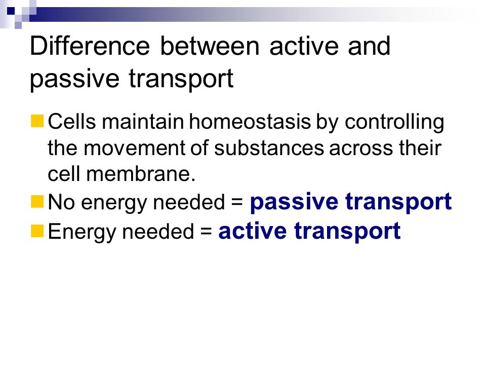 Difference between active and passive transport
