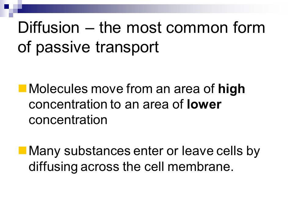 Diffusion – the most common form of passive transport