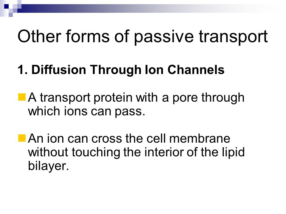 Other forms of passive transport
