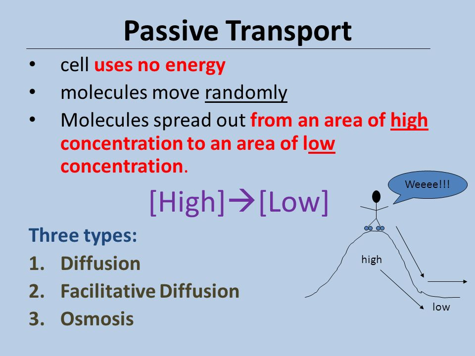 Passive Transport [High][Low] cell uses no energy