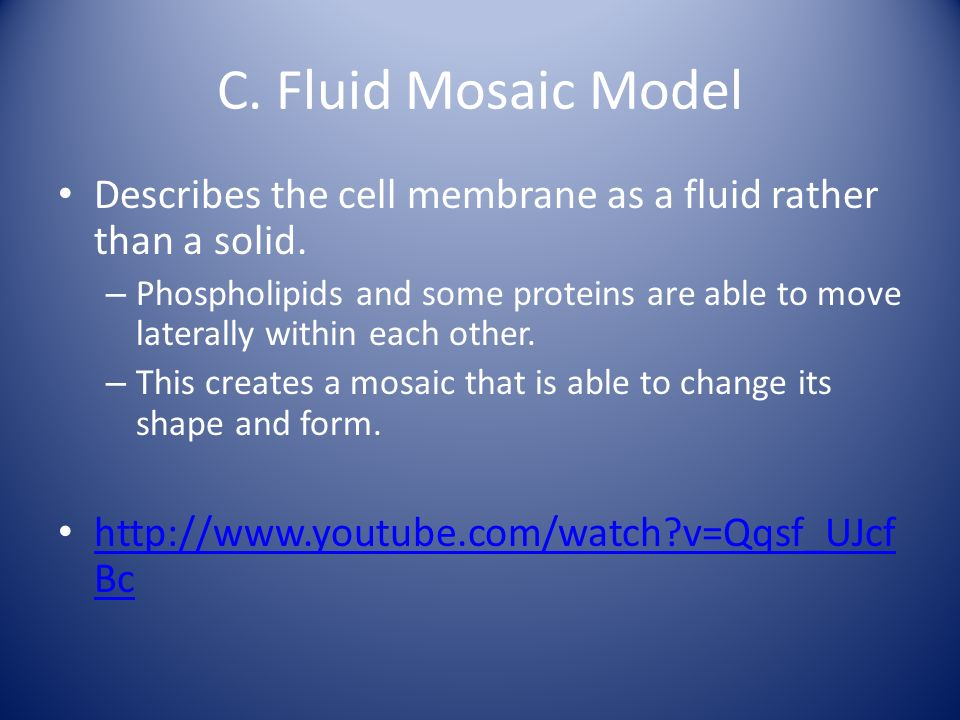 C. Fluid Mosaic Model Describes the cell membrane as a fluid rather than a solid.