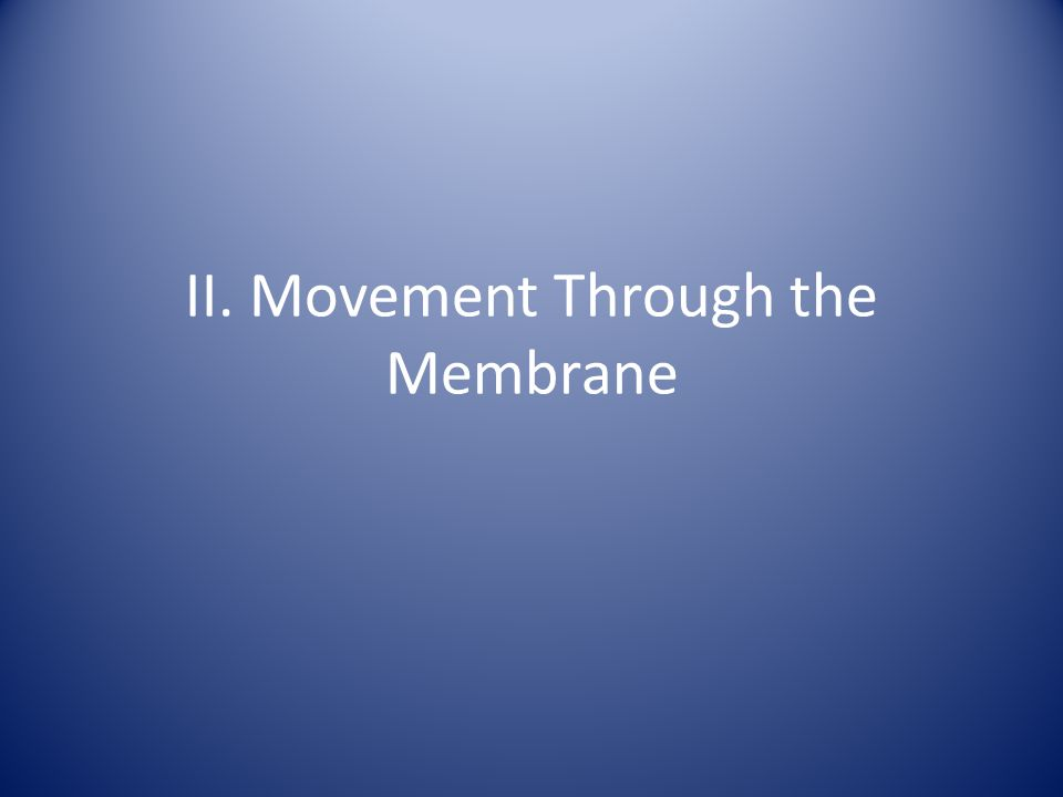II. Movement Through the Membrane