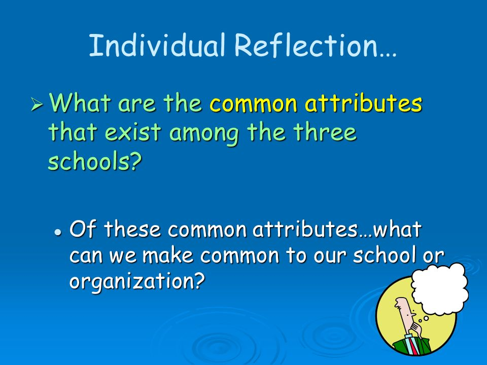 Individual Reflection…