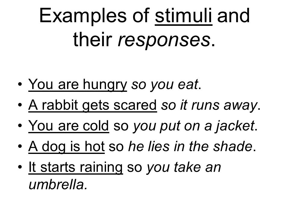 how to write a narrative on any stimulus