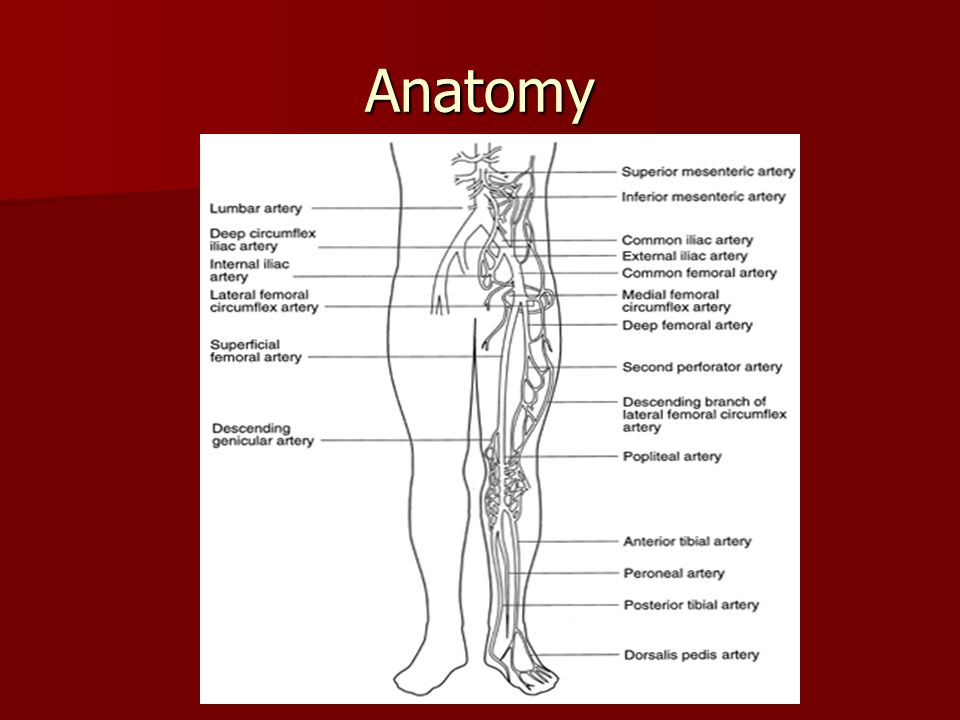 Lower Extremity Vascular Disease - ppt video online download