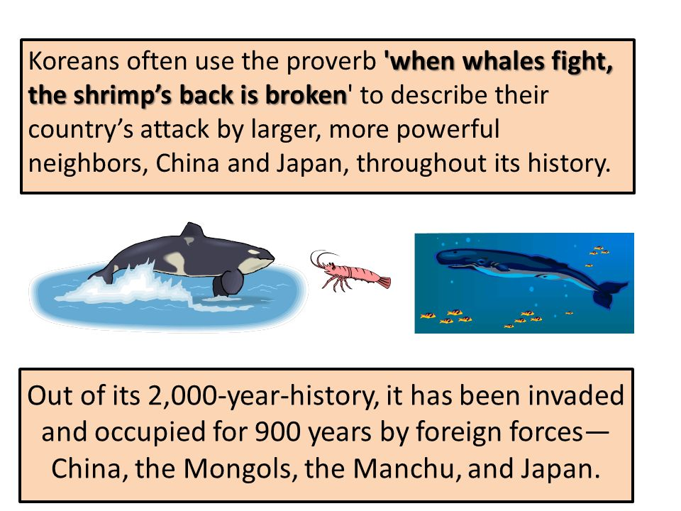 Koreans often use the proverb when whales fight, the shrimp's back is broken to describe their country's attack by larger, more powerful neighbors, China and Japan, throughout its history.
