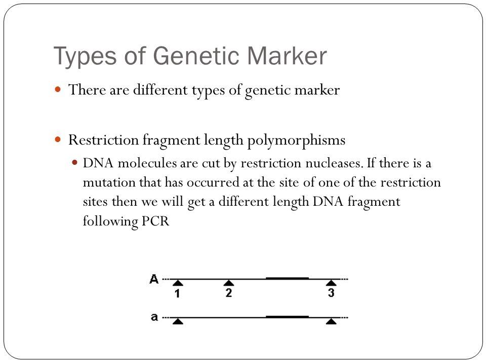 Types of Genetic Marker