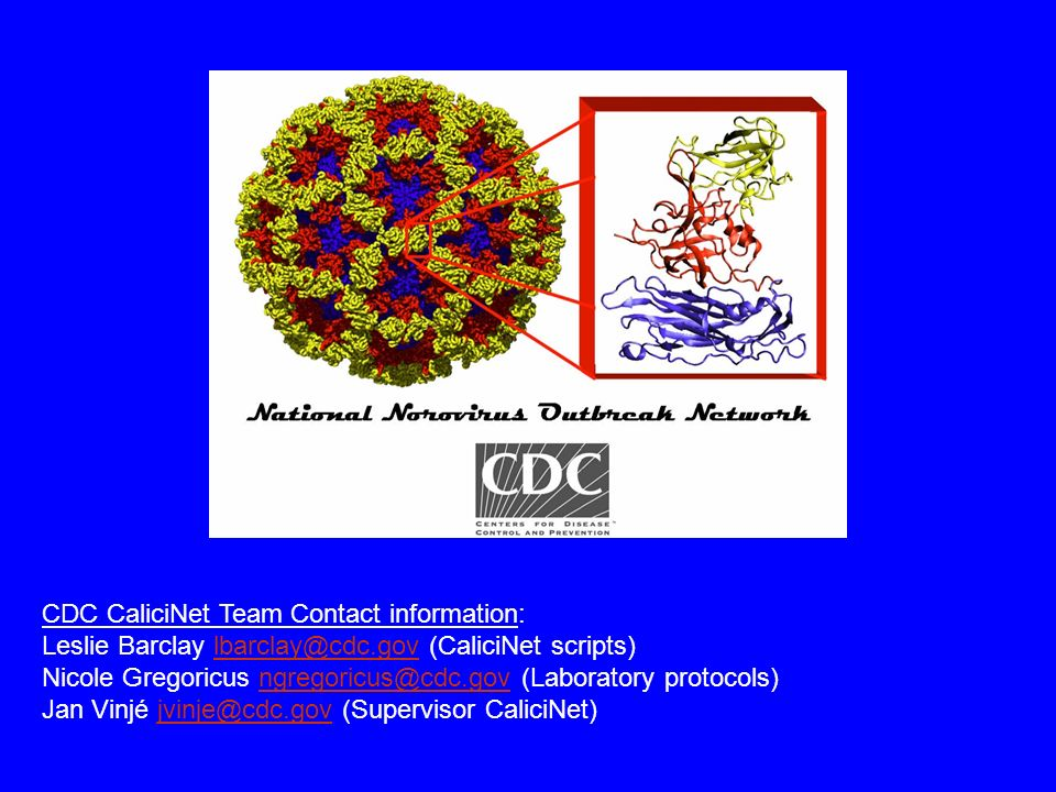 Leslie Barclay lbarclay@cdc.gov (CaliciNet scripts)