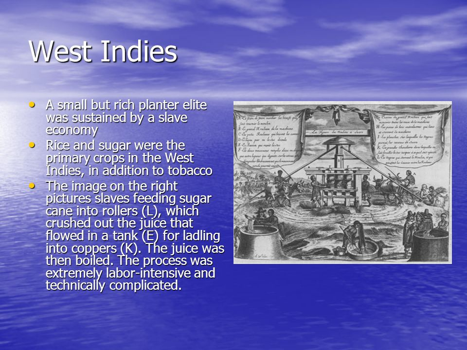 West Indies A small but rich planter elite was sustained by a slave economy.