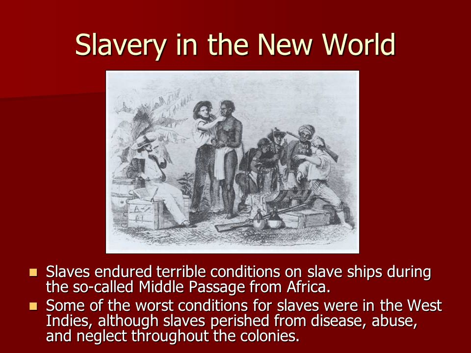 Slavery in the New World