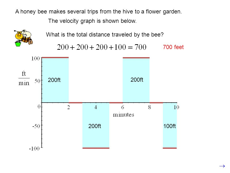 A honey bee makes several trips from the hive to a flower garden.