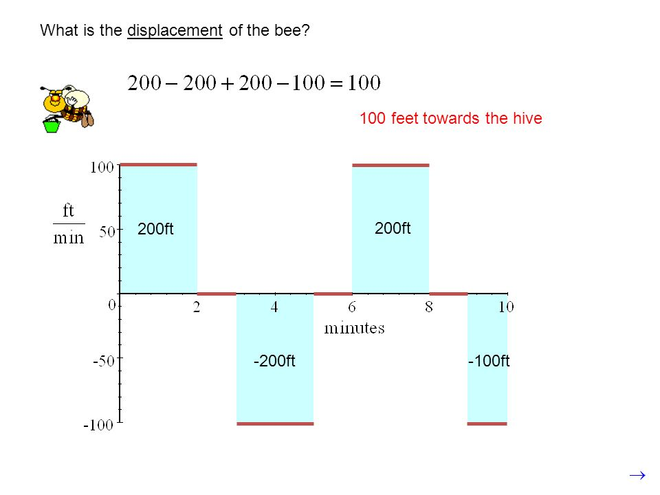 What is the displacement of the bee