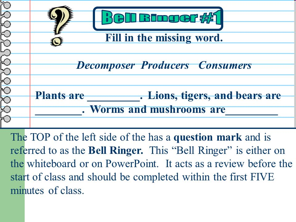 Fill in the missing word. Decomposer Producers Consumers