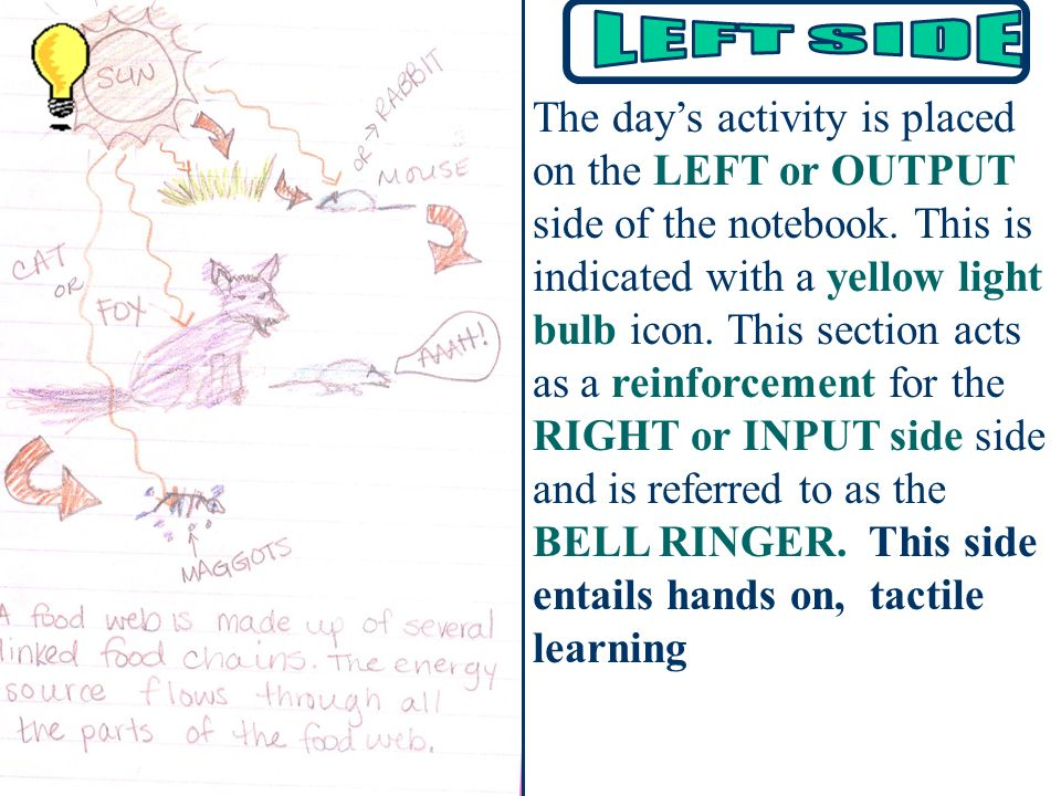 The day's activity is placed on the LEFT or OUTPUT side of the notebook. This is indicated with a yellow light bulb icon. This section acts as a reinforcement for the RIGHT or INPUT side side and is referred to as the BELL RINGER. This side entails hands on, tactile learning