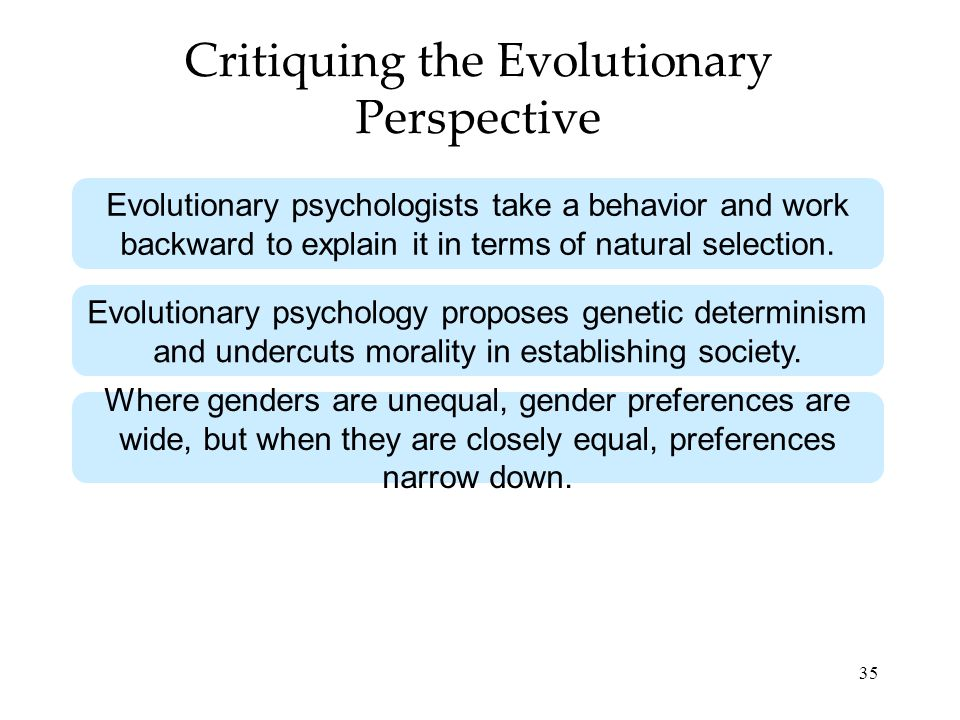 Critiquing the Evolutionary Perspective