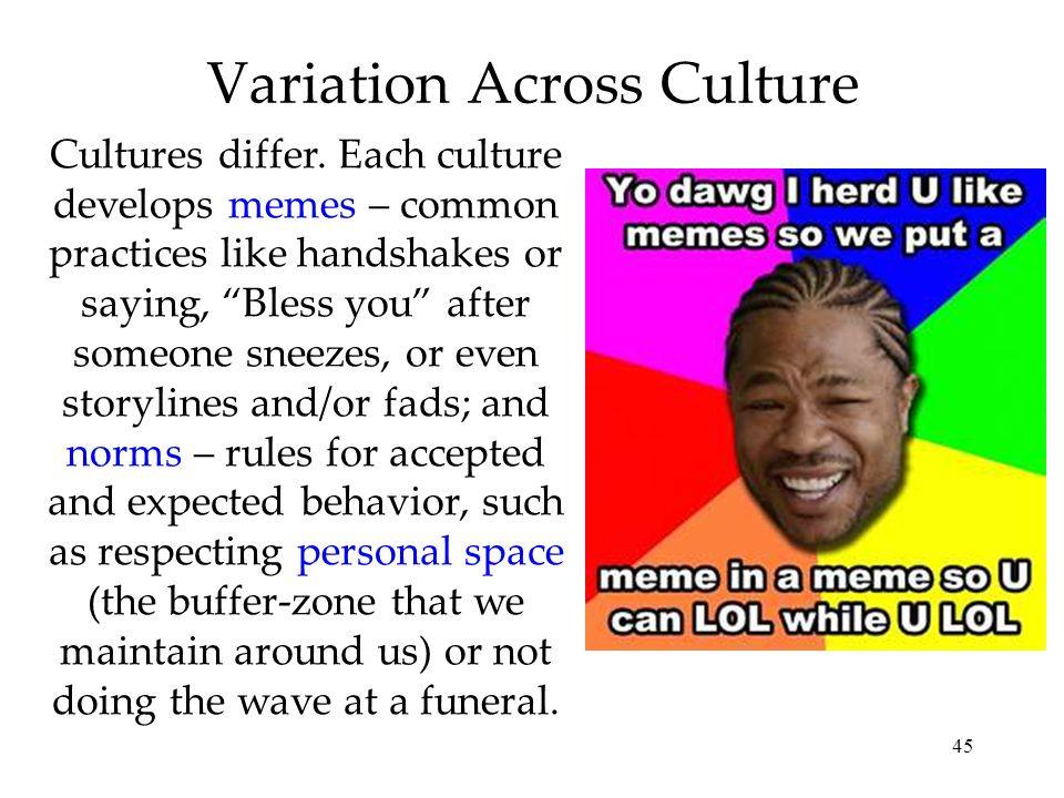 Variation Across Culture