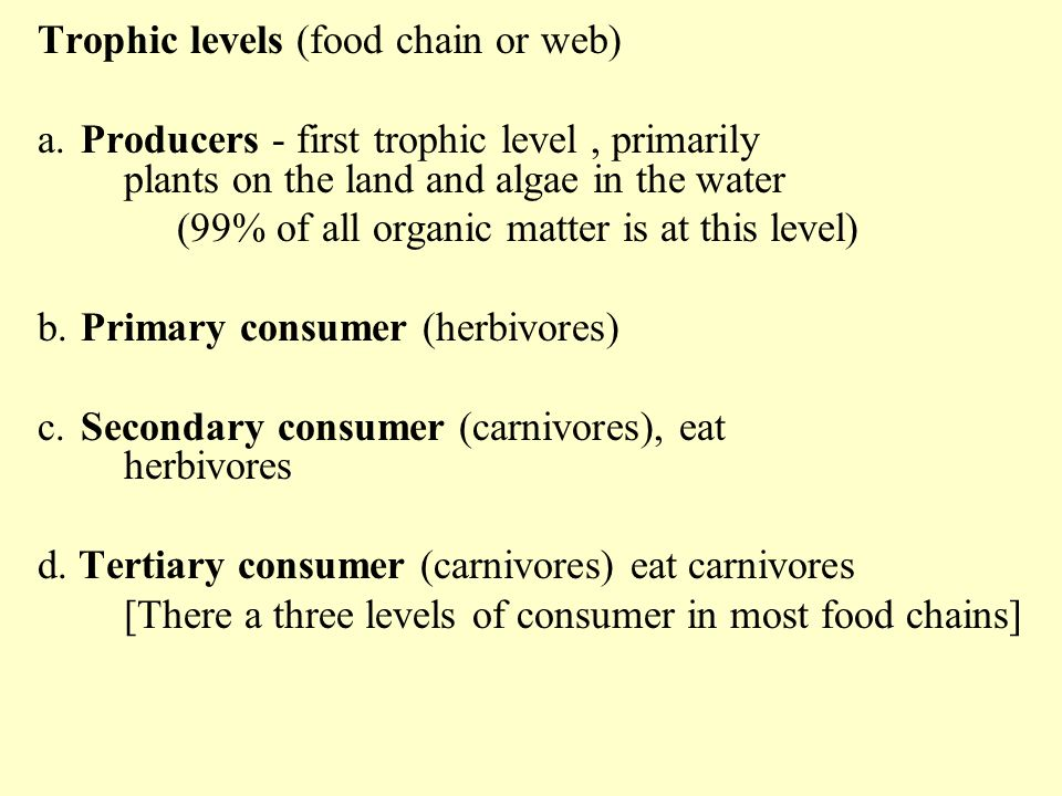 Trophic levels (food chain or web)