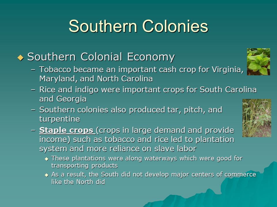 Southern Colonies Southern Colonial Economy