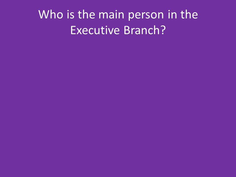 Who is the main person in the Executive Branch