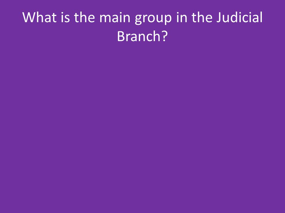 What is the main group in the Judicial Branch
